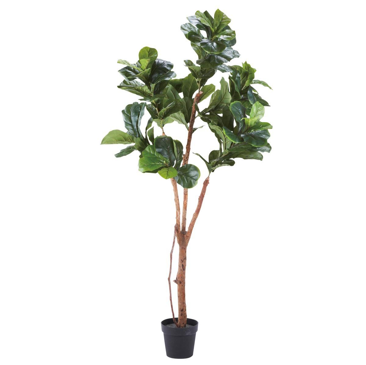 人工観葉植物 フェイクグリーン 観葉植物 造花 大型 カシワバゴム 180cm インテリア おしゃれ フェイク グリーン CT触媒 消臭 抗菌 お祝い