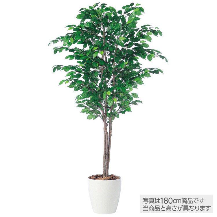 【フェイクグリーン 大型】 フィッカスベンジャミナトリプル (ベンジャミン) 200cm 鉢植 【観葉植物 造花 人工観葉植物 光触媒 CT触媒 インテリア】