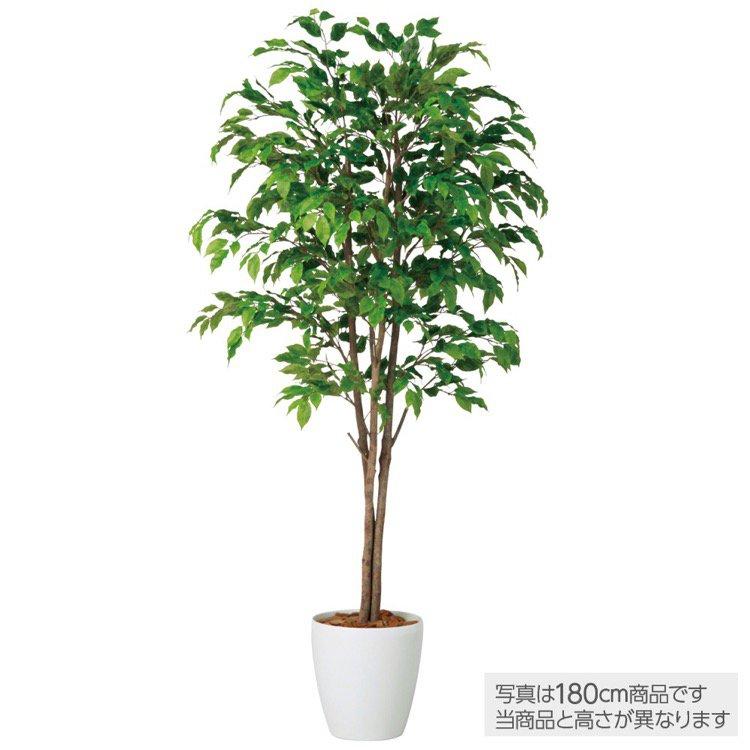 【観葉植物 造花 大型】 ベンジャミナスプラッシュトリプル (ベンジャミン) 200cm 鉢植 【フェイクグリーン 人工観葉植物 光触媒 CT触媒 インテリア】