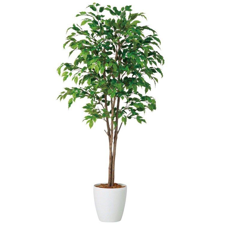 【観葉植物 造花 大型】 ベンジャミナスプラッシュトリプル (ベンジャミン) 180cm 鉢植 【人工観葉植物 フェイクグリーン 光触媒 CT触媒 インテリア】