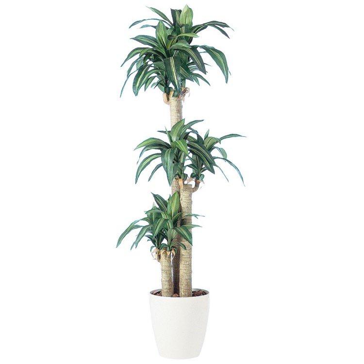 【観葉植物 造花 大型】 マッサンゲアナ 170cm 鉢植 【フェイクグリーン 人工観葉植物 光触媒 CT触媒 インテリア】