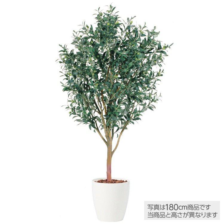 【フェイクグリーン】 ライプオリーブ 150cm 鉢植 【観葉植物 造花 大型 人工観葉植物 光触媒 CT触媒 インテリア】