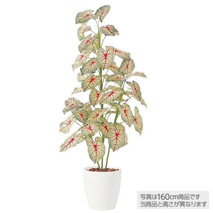 【人工観葉植物】 カラジウムトロピカーナ 100cm 鉢植 【観葉植物 造花 大型 フェイクグリーン 光触媒 CT触媒 インテリア】