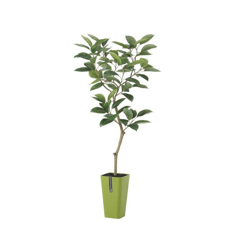 【フェイクグリーン】 デコラゴム FST (ゴムの木) 150cm 鉢植 【人工観葉植物 大型 観葉植物 造花 光触媒 CT触媒 インテリア】