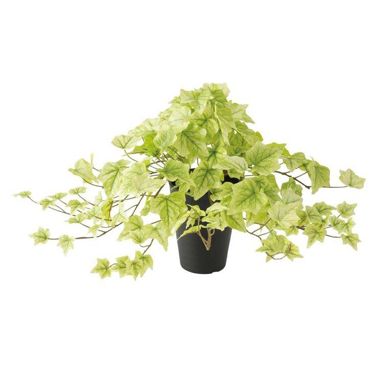 オフィス 消臭 人気ブレゼント 抗菌 おすすめ おしゃれ 癒しのグリーンでいつでも空気すっきり 人工観葉植物 ライムアイビー CT触媒 造花 インテリア 観葉植物 35cm フェイクグリーン 日本最大級の品揃え 光触媒