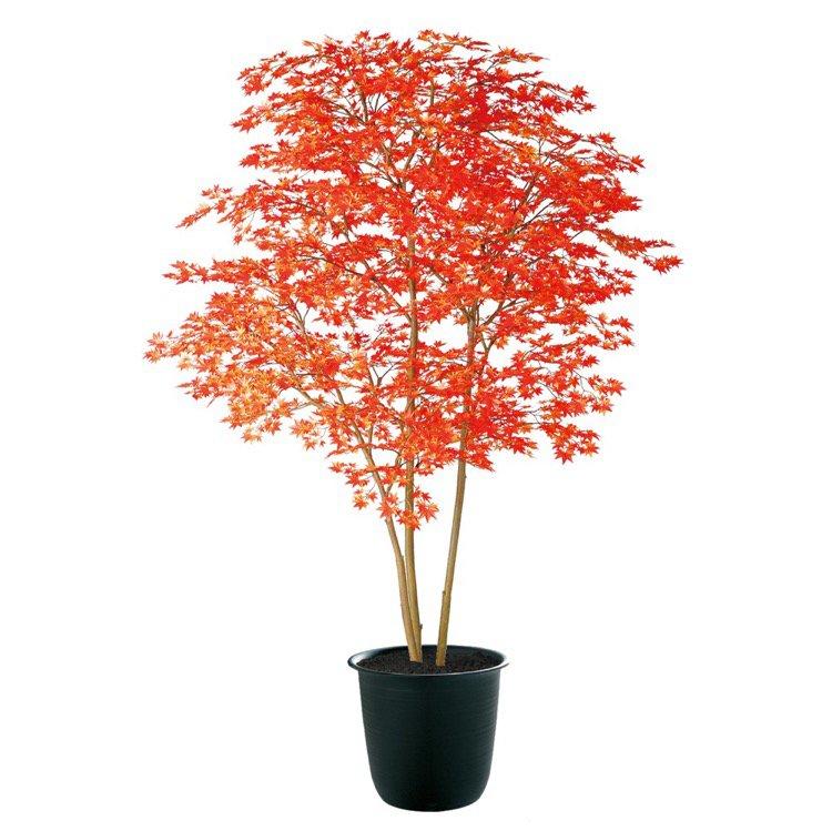 【人工観葉植物 大型】 ヤマモミジ株立 RED FST 200cm 鉢植 【フェイクグリーン 観葉植物 造花 光触媒 CT触媒 インテリア】
