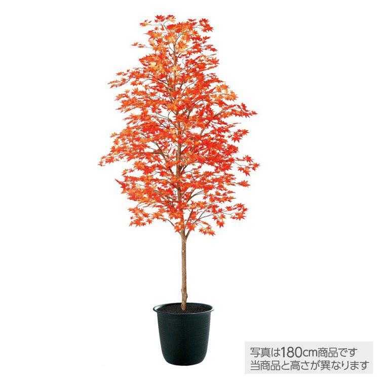 【人工観葉植物】 ヤマモミジ 紅 150cm 鉢植 【フェイクグリーン 大型 観葉植物 造花 光触媒 CT触媒 インテリア】
