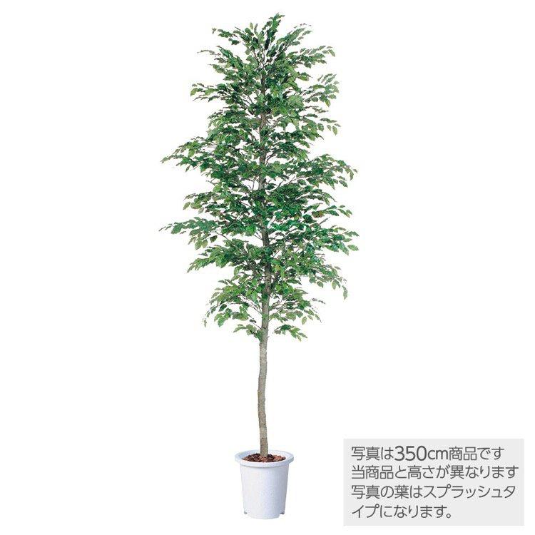 【観葉植物 造花 大型】 ベンジャミナスプラッシュセパレート (ベンジャミン) 400cm 鉢植 【人工観葉植物 フェイクグリーン 光触媒 CT触媒 インテリア】