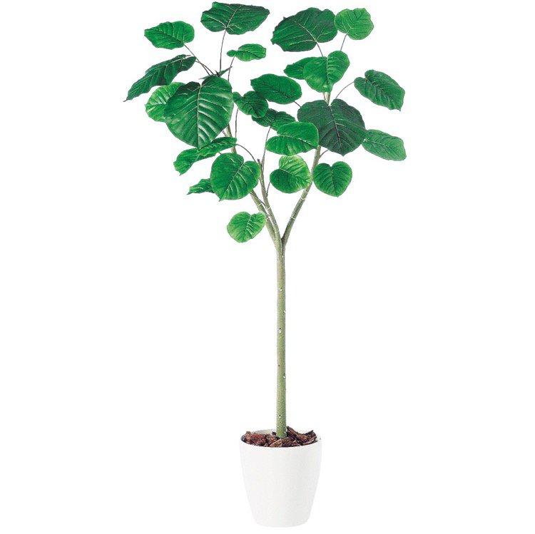 【フェイクグリーン 大型】 ウンベラータ 180cm 鉢植 【観葉植物 造花 人工観葉植物 光触媒 CT触媒 インテリア】