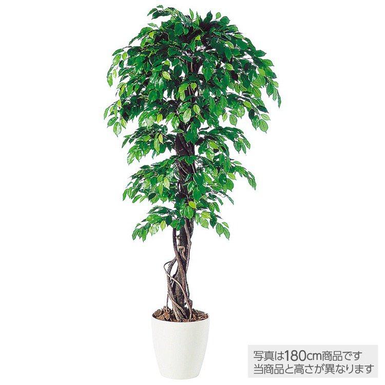 【人工観葉植物】 フィッカスベンジャミナリアナ (ベンジャミン) 150cm 鉢植 【フェイクグリーン 大型 観葉植物 造花 光触媒 CT触媒 インテリア】