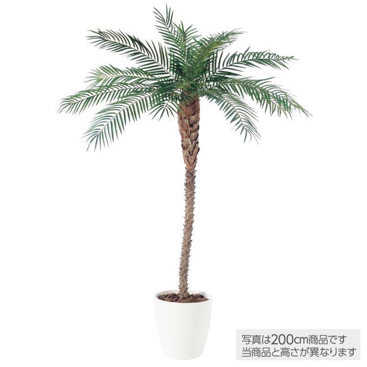 【人工観葉植物大型】フェニックス(天然幹)(パーム)250cm鉢植【フェイクグリーン観葉植物造花インテリア】