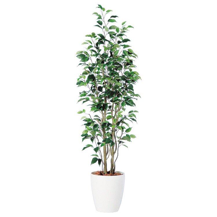 【フェイクグリーン】 ベンジャミン スリム FST 150cm 鉢植 【観葉植物 造花 大型 人工観葉植物 光触媒 CT触媒 インテリア】