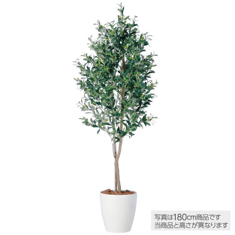【人工観葉植物 大型】 ライプオリーブデュアル 200cm 鉢植 【フェイクグリーン 観葉植物 造花 光触媒 CT触媒 インテリア】