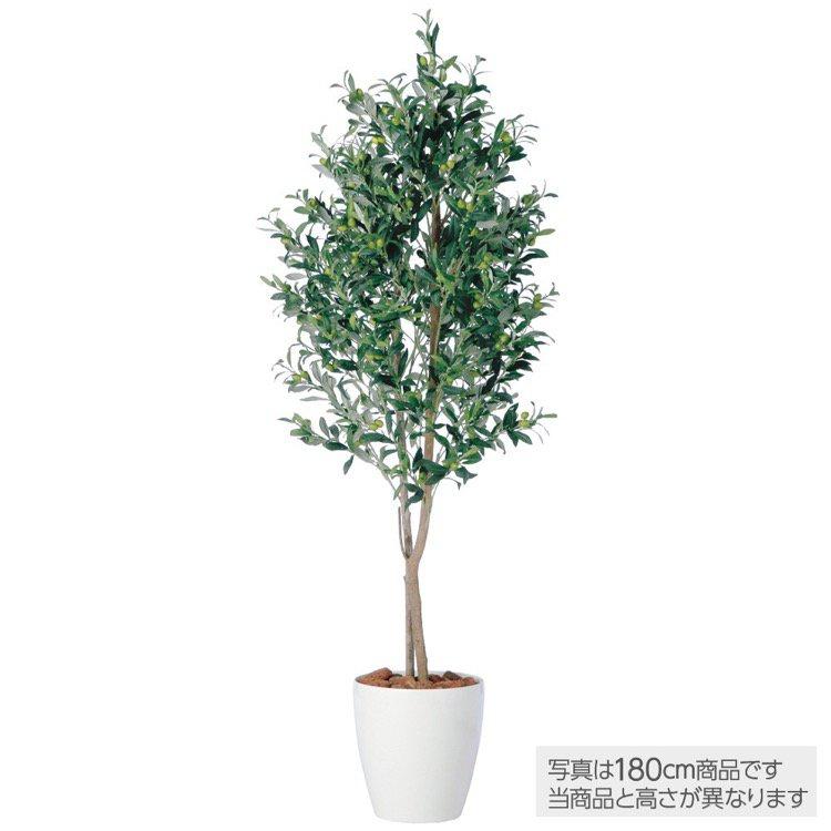 【観葉植物 造花】 ライプオリーブデュアル 150cm 鉢植 【人工観葉植物 大型 フェイクグリーン 光触媒 CT触媒 インテリア】