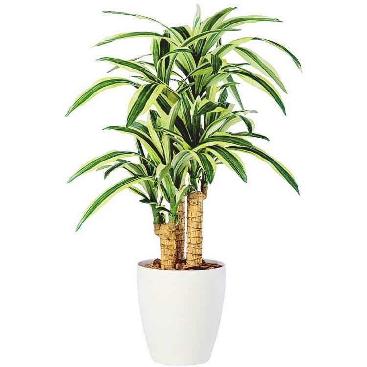 【フェイクグリーン】 ドラセナビクトリートリプル (幸福の木) 100cm 鉢植 【人工観葉植物 大型 観葉植物 造花 光触媒 CT触媒 インテリア】