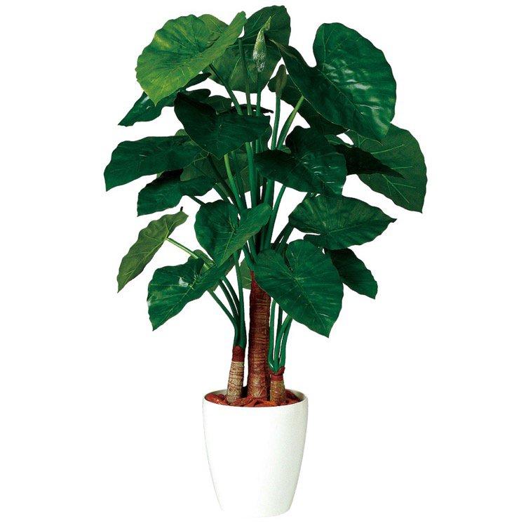 【人工観葉植物】 クワズイモ トリプル 130cm 鉢植 【観葉植物 造花 大型 フェイクグリーン 光触媒 CT触媒 インテリア】