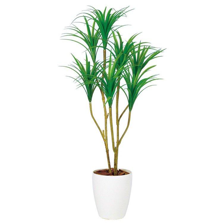 【フェイクグリーン】 コンシンネ (コンシナ) 120cm 鉢植 【人工観葉植物 大型 観葉植物 造花 光触媒 CT触媒 インテリア】