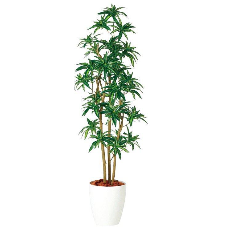 【フェイクグリーン】 ソング・オブ・ジャマイカ FST (ドラセナ 幸福の木) 150cm 鉢植 【人工観葉植物 大型 観葉植物 造花 光触媒 CT触媒 インテリア】