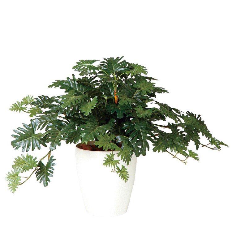 【人工観葉植物】 クッカバラ 60cm 【フェイクグリーン 観葉植物 造花 光触媒 CT触媒 インテリア】
