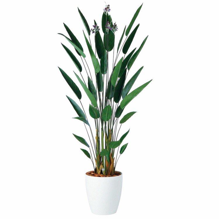 【フェイクグリーン 大型】 カンナ 200cm 鉢植 【観葉植物 造花 人工観葉植物 光触媒 CT触媒 インテリア】