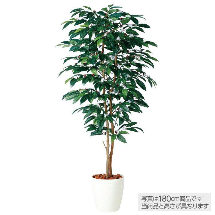 【人工観葉植物】 コーヒーデュアル (コーヒーの木) 150cm 鉢植 【観葉植物 造花 大型 フェイクグリーン 光触媒 CT触媒 インテリア】