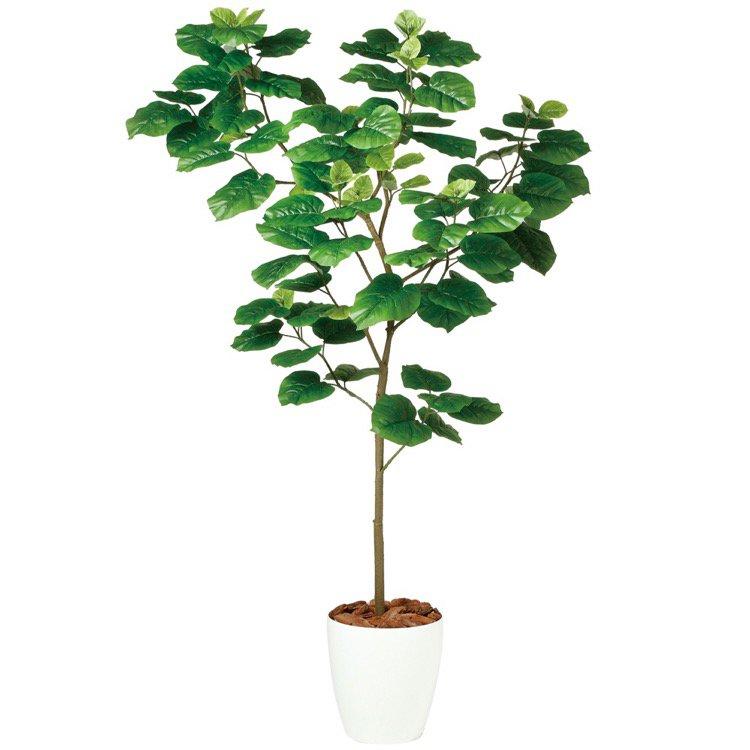 【観葉植物 造花 大型】 ウンベラータ FST 180cm 鉢植 【人工観葉植物 フェイクグリーン 光触媒 CT触媒 インテリア】