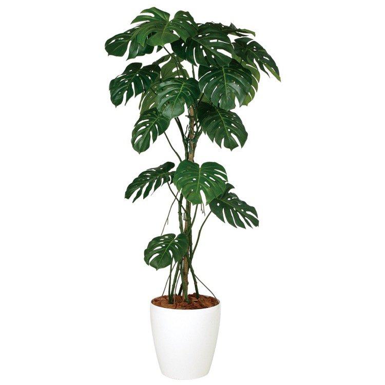 【観葉植物 造花】 モンステラバイン 180cm 鉢植 【人工観葉植物 フェイクグリーン 光触媒 CT触媒 インテリア】