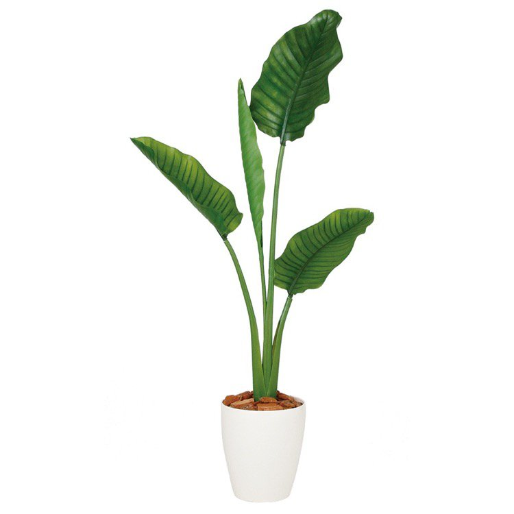 【人工観葉植物】 ストレリチア・オーガスタ (ストレチア) 130cm 鉢植 【フェイクグリーン 大型 観葉植物 造花 光触媒 CT触媒 インテリア】