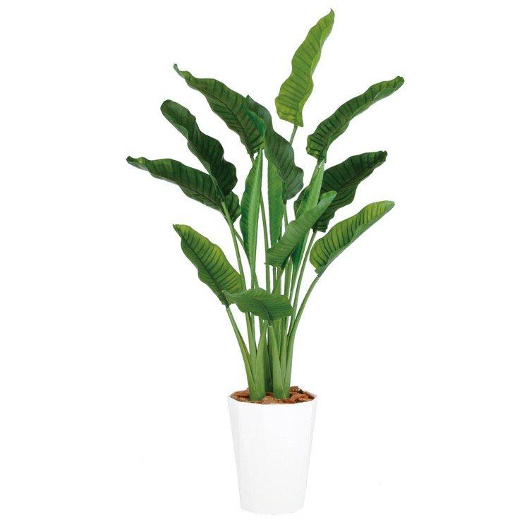 【フェイクグリーン 大型】 ストレリチア・オーガスタ MIX (ストレチア) 170cm 鉢植 【人工観葉植物 観葉植物 造花 光触媒 CT触媒 インテリア】