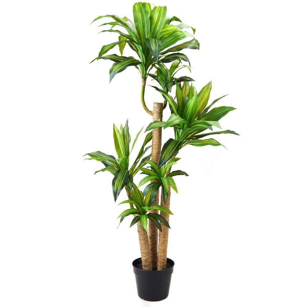 人工観葉植物 フェイクグリーン 観葉植物 造花 光触媒 大型 ドラセナ 148cm フェイク グリーン インテリア おしゃれ CT触媒 お祝い