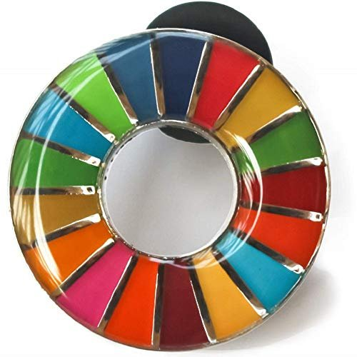 70%OFFアウトレット 国連本部限定販売 SDGs ピンバッジ 1個 人気 丸み仕上げ 国連正規品