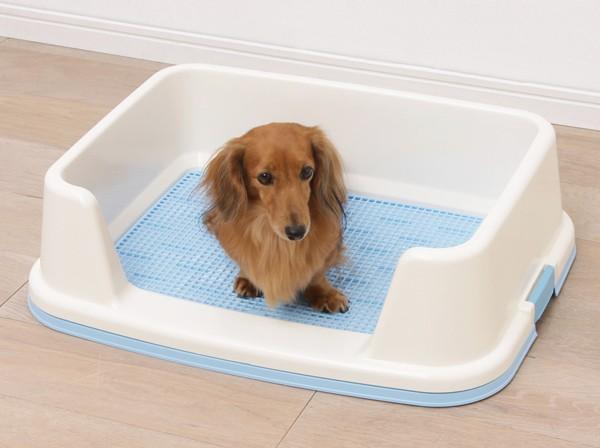 アイリスオーヤマ トレーニング犬トイレ TRT-500 ミルキーピンク・ミルキーブルー・ミルキーブラウン