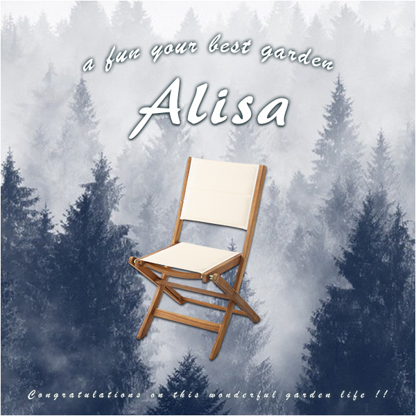sh-01-als-gr【送料無料】人気の折りたたみガーデンチェア(2脚セット)アカシア材を使用 | Alisa-アリーザ-