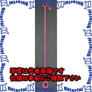 【代引不可】【個人宅配送不可】ESCO(エスコ) 5.2tonx2.0m [1本懸け]スリングチェーン EA981VJ-32[ESC101761]