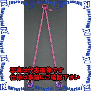 【P】【代引不可】【個人宅配送不可】ESCO(エスコ) 2.8tonx1.5m [2本懸け]スリングチェーン EA981VK-11[ESC101763]