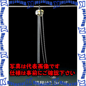 【P】【代引不可】【個人宅配送不可】ESCO(エスコ) 250kgx2.5m チェーンブロック EA987AA[ESC105880]