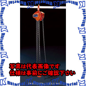 【代引不可】【個人宅配送不可】ESCO(エスコ) 0.5tonx5.0m チェーンブロック EA987CJ-5[ESC105895]