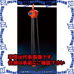 【P】【代引不可】【個人宅配送不可】ESCO(エスコ) 3.0tonx3.0m チェーンブロック EA987CN-3[ESC105902]