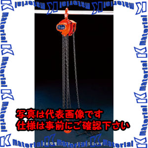 【代引不可】【個人宅配送不可】ESCO(エスコ) 3.0tonx5.0m チェーンブロック EA987CN-5[ESC105903]