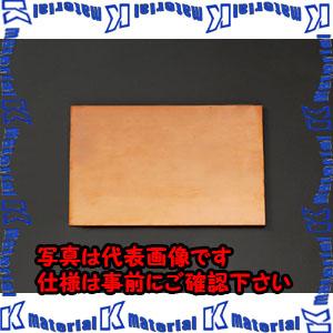 【代引不可】【個人宅配送不可】ESCO(エスコ) 300x200x10.0mm 銅板 EA441VA-101[ESC013926]