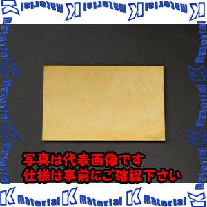 【代引不可】【個人宅配送不可】ESCO(エスコ) 600x300x 6.0mm 黄銅板 EA441VB-64[ESC013945]