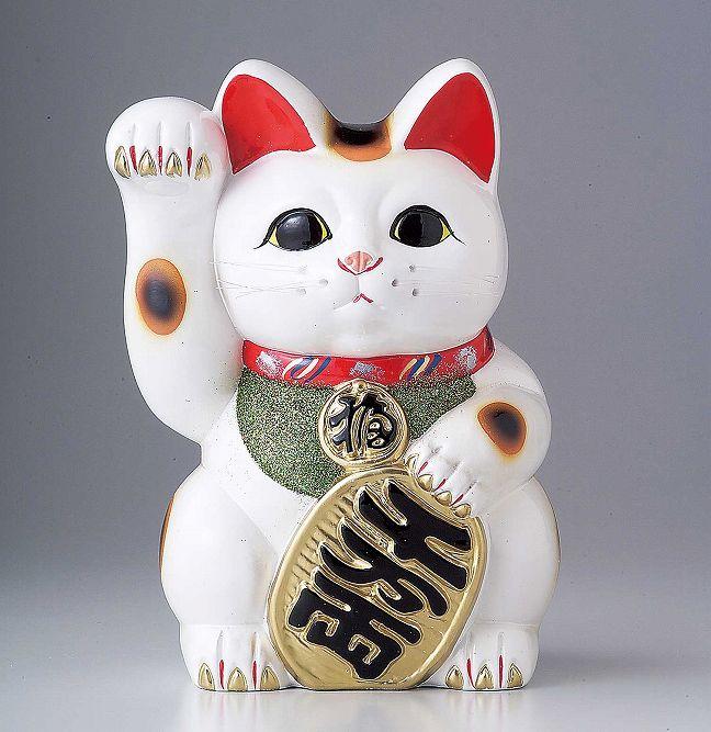 ラッピング無料/ 白小判猫8号右手 /ギフト 贈り物 プレゼント 敬老の日 新築祝い 引き出物 母の日 父の日