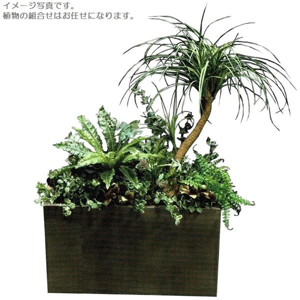 【人工観葉植物】アーティフィシャルグリーンアレンジ 鉢付き 幅95cm rg-001 インテリア 造花