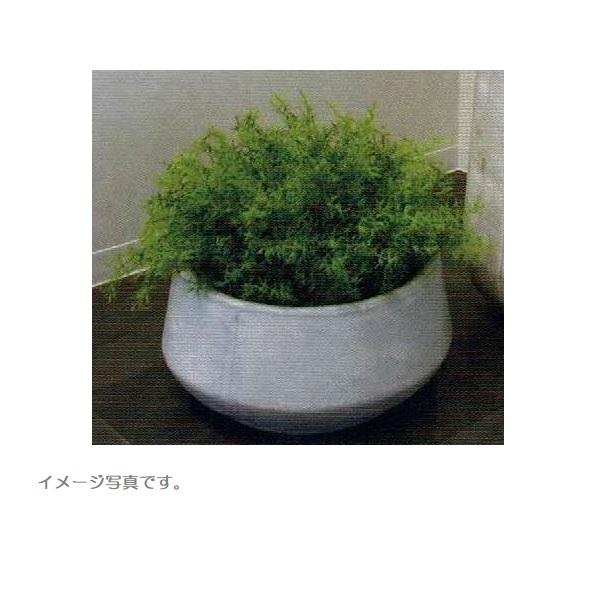 【人工観葉植物】アーティフィシャルグリーンアレンジ 鉢付き 幅50cm rg-009 インテリア 造花