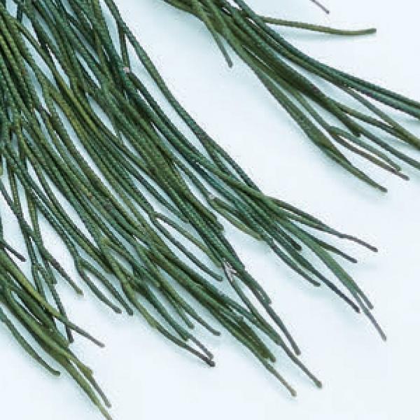 人工観葉植物 リプサリスハンキングブッシュ(12個セット) ba990 (代引き不可) インテリアグリーン 造花 HANGING BUSH