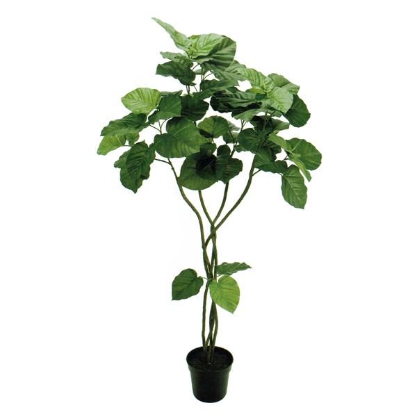 【限定特価】 人工観葉植物 ウンベラータツイスト5F 高さ150cm fg5226 (き) インテリアグリーン 造花, NEOLATINE WEB STORE 0a5e1aa3