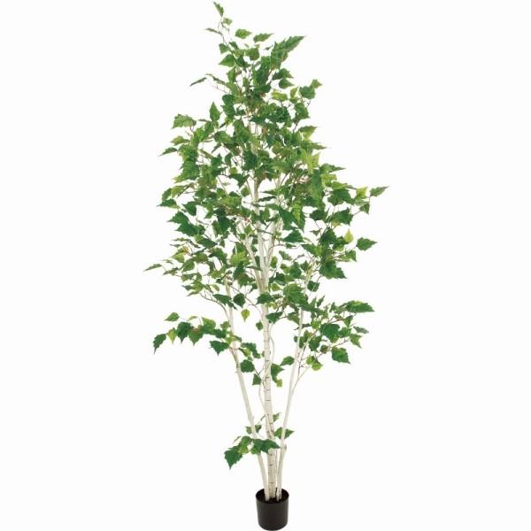 新版 fg19000 造花:さくらソレイユ 店 人工観葉植物 (き) 高さ180cm インテリアグリーン シラカバ-花・観葉植物