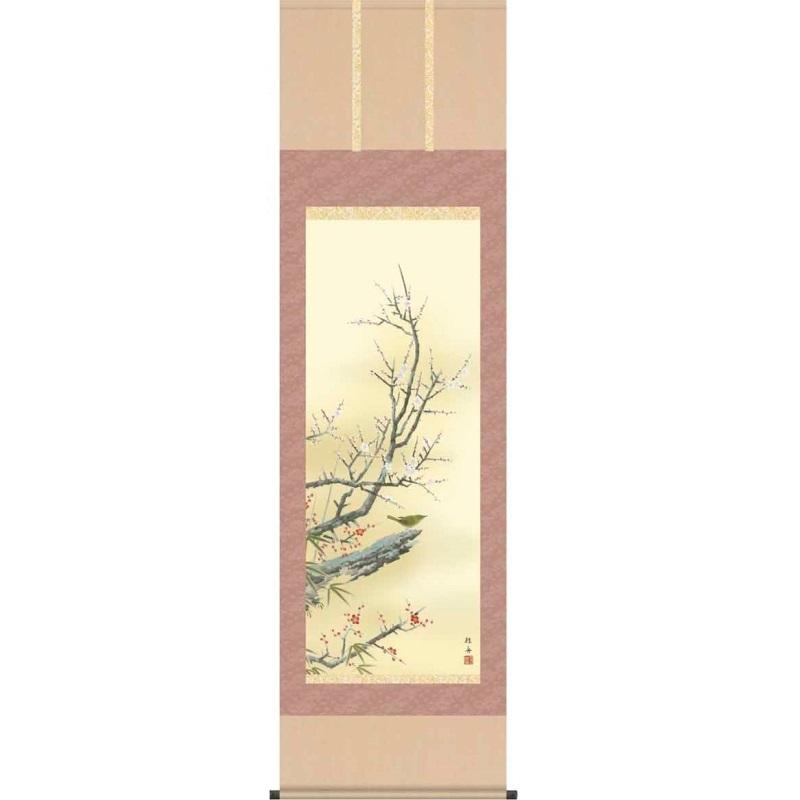 [掛軸][紅白梅に鶯]長江桂舟[尺五][花鳥画の掛軸][H29A6-22A]四季花鳥[春]【代引き不可】