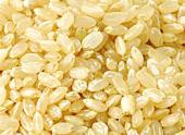 【2個で送料無料】カラダ酵素(3.5g×90袋入)×2個