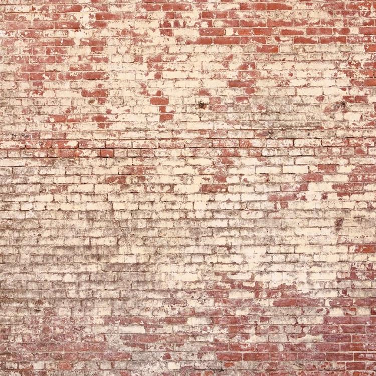 【国内 送料無料】 フランス製(ヨーロッパ) のりなし 輸入壁紙 パネル(壁画) Caselio(カセリオ) 【カタログ ETNA】 フリース(不織布)壁紙 クロス ETN63681111 [購入単位 1セット(400cm×2.8m 8パネル)] 【お取り寄せ品】